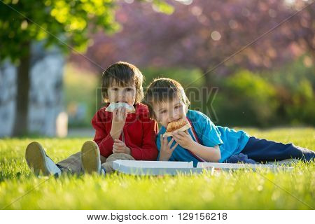 Two Little Boys Having Dinner With Pizza On Sunset, Picnic On The Grass