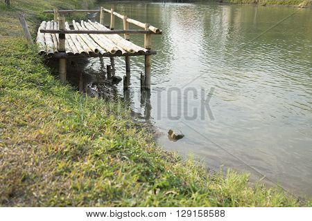 Pier At Waterside Of Pond