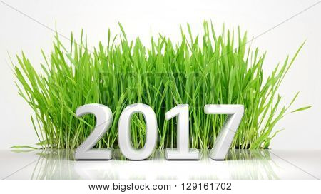 3D rendering of 2017 with green grass, on white background.