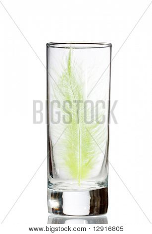 feather in the glass