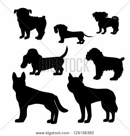 Dog breed set. Illustration of dog breedsilhouette. Dog breed vector icons isolated. Dog breed silhouette for dog theme design. Dog breed vector illustration.
