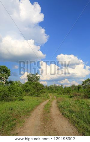 countryside road across meadow in steppe