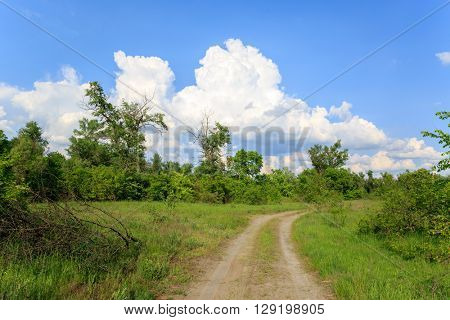 rut road in steppe under nice sky with clouds