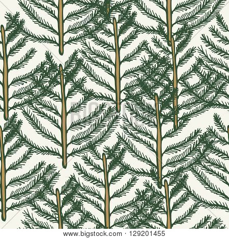 Seamless pattern tree fir pine vector. Vector illustration hand drawn gold and green