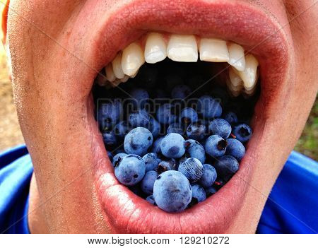 Picture of a mouth full of blueberries.