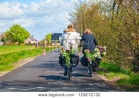 Lisse Netherlands - April 23 2016: unidentified women riding bicycle with flowers in a basket in Lisse. Lisse is world renown for the Keukenhof and the large tulip fields in the region.