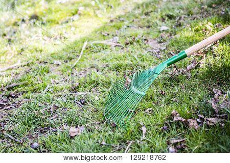 green rake on the grass - prepared for gardening