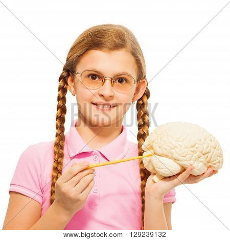 Schoolgirl in glasses with two long plaits holding cerebrum model and yellow pointer, isolated on white