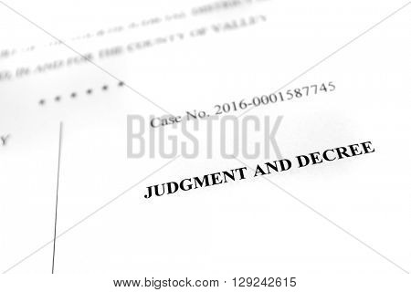 Detail of legal papers Judgment and Decree pleadings lawyer