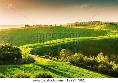 Green Hills Of Tuscany, Italy.
