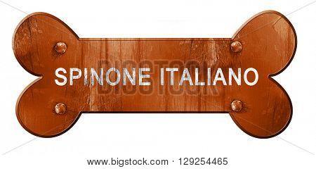 Spinone italiano, 3D rendering, rough brown dog bone