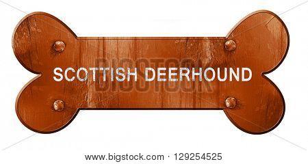 Scottish deerhound, 3D rendering, rough brown dog bone