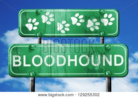 Bloodhound, 3D rendering, rough green sign with smooth lines
