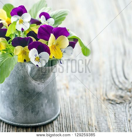 Violet pansies bouquet in a metal tin cup on wooden vintage background