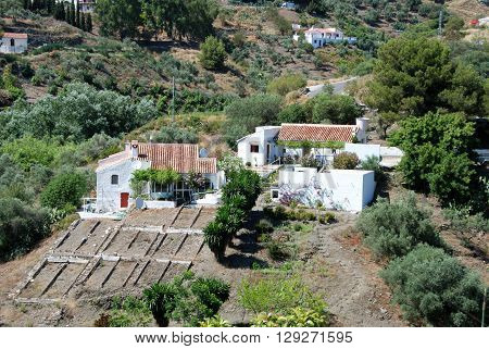 Country fincas in a valley between Torrox and Competa Malaga Province Andalucia Spain Western Europe.