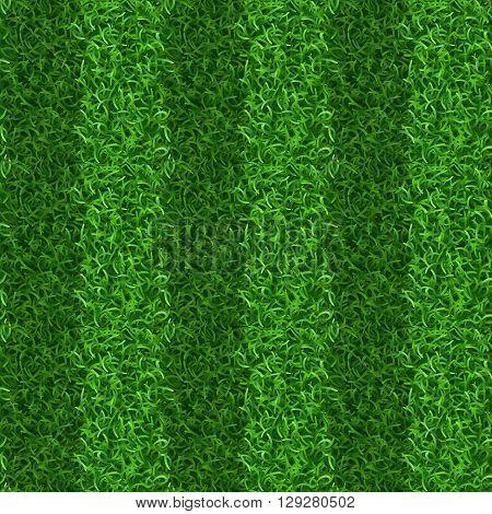 Striped green grass field seamless vector texture. Grass repeat organic, grass gridiron field, soccer or football playing grass field illustration