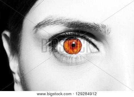 A b eautiful insightful look brown eyes