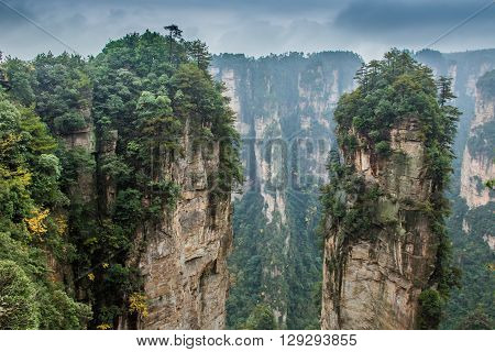 Breathtaking landscape summer day in Zhangjiajie, China