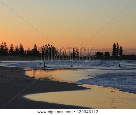 Evening scene in Port Macquarie Australia. Beach and silhouettes of trees.