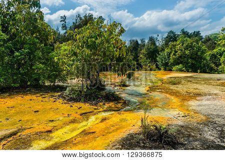 Khao Pra Bang Khram Wildlife Sanctuary way to Emerald Pool aka Sa Morakot tourist destination. National Park Krabi Thailand. Green tropical forest Southeast Asia. Yellow and orange soil poster