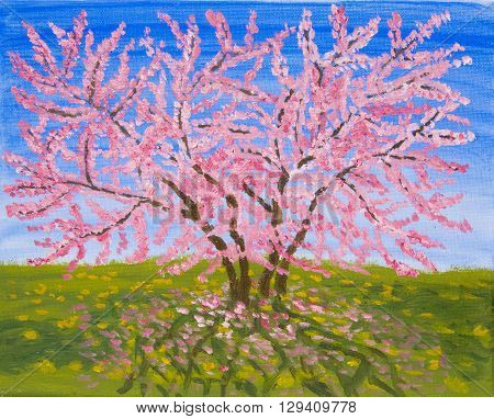 Cercis tree in blossom oil painting on acrylic sky.
