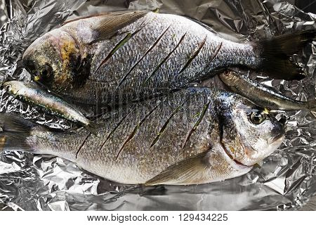 Delicious fresh raw gilthead with herbs. Culinary healthy cooking.