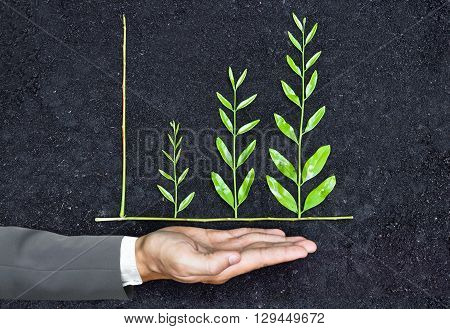 Hand of a businessman holding tree arranged as a green graph on soil background / csr / sustainable development / corporate social responsibility