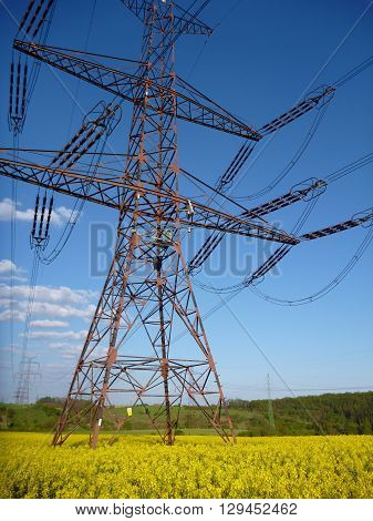 Electrical Wire Tower In A Yellow Rape Field