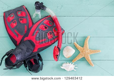Pair Of Red And Black Flippers With Seashells