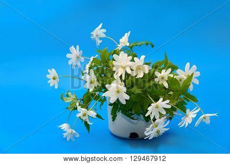 Bouquet Of Flowers Snowdrop Anemone