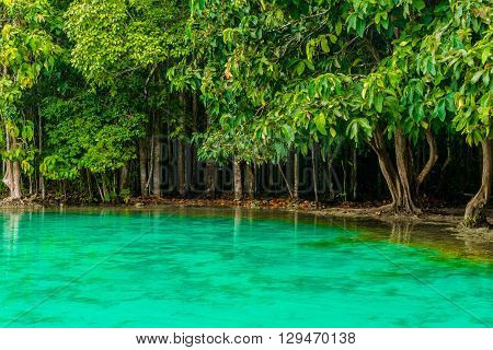 Emerald Pool aka Sa Morakot Khao Pra Bang Khram Wildlife Sanctuary Krabi Thailand. National Park Krabi Thailand tourist destination. Green color tropical lake Southeast Asia