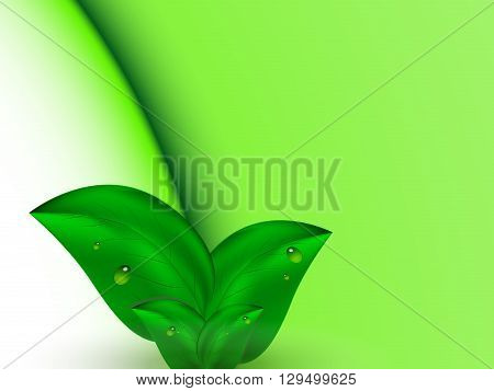 Green abstract bright summer background of green leaves with dew, vector illustration