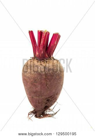 Red beet isolated on a white background