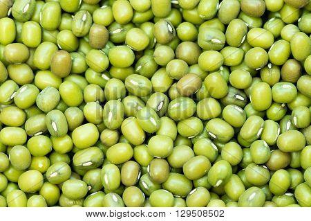 Green beans of soja bio. Backround, macro.