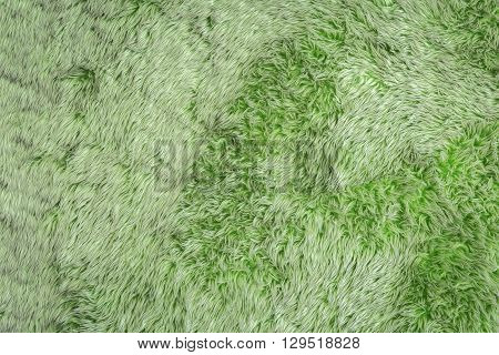 Green Wool Textile Texture And Background