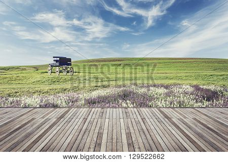 Wooden Flooring And View Of Nature With Vintage Filter Effect