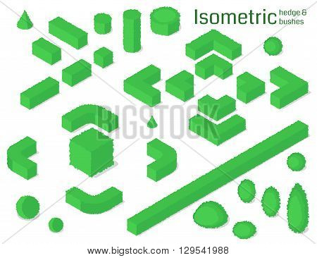 Isometric hedge and bushes set. Vector illustration