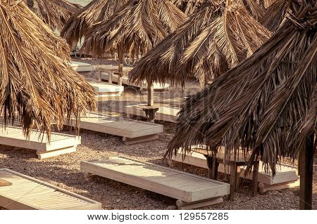 Palm trees and trestle-beds on a beach
