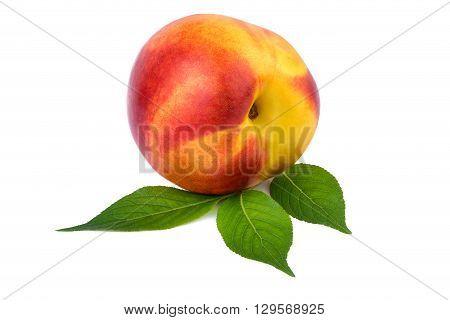 Nectarine one fruit  with leaf isolated on white
