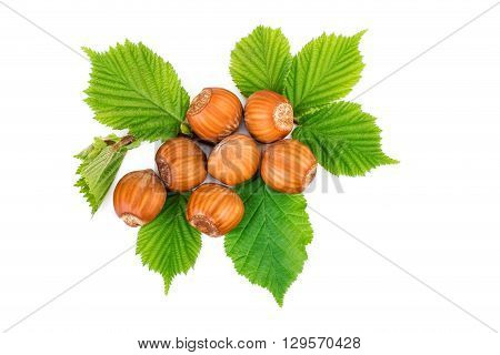 Hazelnut or filbert nuts with leaves on white. Flat lay top view.