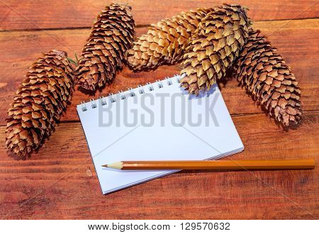 Blank notepad, brown pencil and dry pine cones on a wooden background