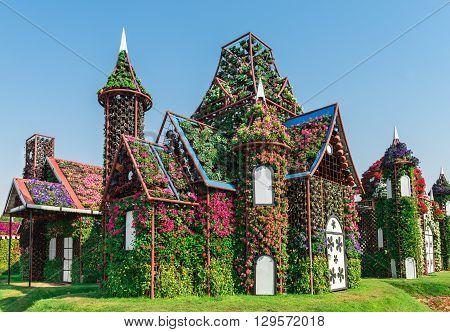 Dubai Miracle Garden With Over Million Flowers