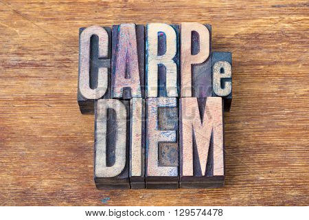 carpe diem - famous ancient Roman poet Horace quote with meaning - seize the day made from wooden letterpress type on grunge wood