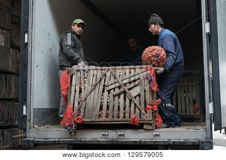 Saint-Petersburg Russia - April 15 2016: Loaders stack sacks of potatoes in a container vegetable store in a special room.