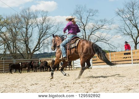 Young cowgirl with hat riding a beautiful paint horse in a barrel racing event at a rodeo in Mitrov Czech republic
