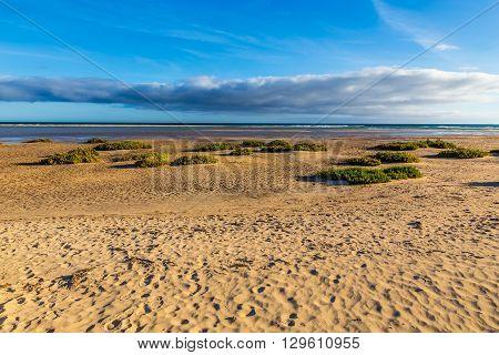 Sotavento Beach During Clear Summer Day - Fuerteventura Canary Islands Spain