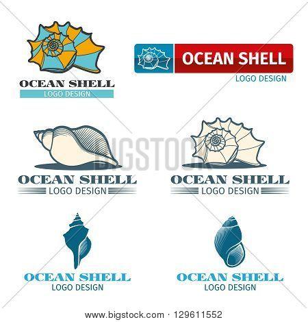 Shell vector design logo set. Ocean shell logo, ocean shell element, ocean shell collection illustration