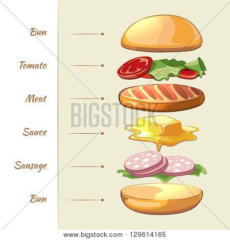 Hamburger ingredients. Vector infographics. Hamburger food, hamburger snack, hamburger illustration illustration