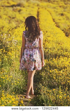 Young Girl Walks Among Daisies In A Spring Field