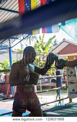 KO PHA NGAN, THAILAND - FEBRUARY 12, 2016: Unidentified Thai boxer fighting in the ring. Muay Thai is a combat sport of Thailand that uses stand-up striking with various clinching techniques.